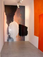 Libertine_Appearance_and_Disappearance_NewYork_MaleneLandgreen_Installation_2004-1 thumbnail